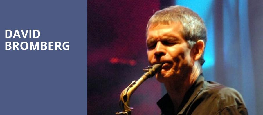 David Bromberg, The Tin Pan, Richmond